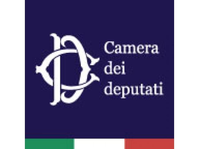 Audizione Del Cnr-Icar Alla Camera Dei Deputati Per La Semplificazione Dei Servizi Sanitari